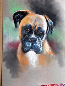 Single Pet Pastel Portrait